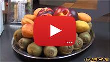 ico-sez-food